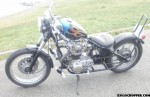 1973 TX650 Now Alive & on the Road