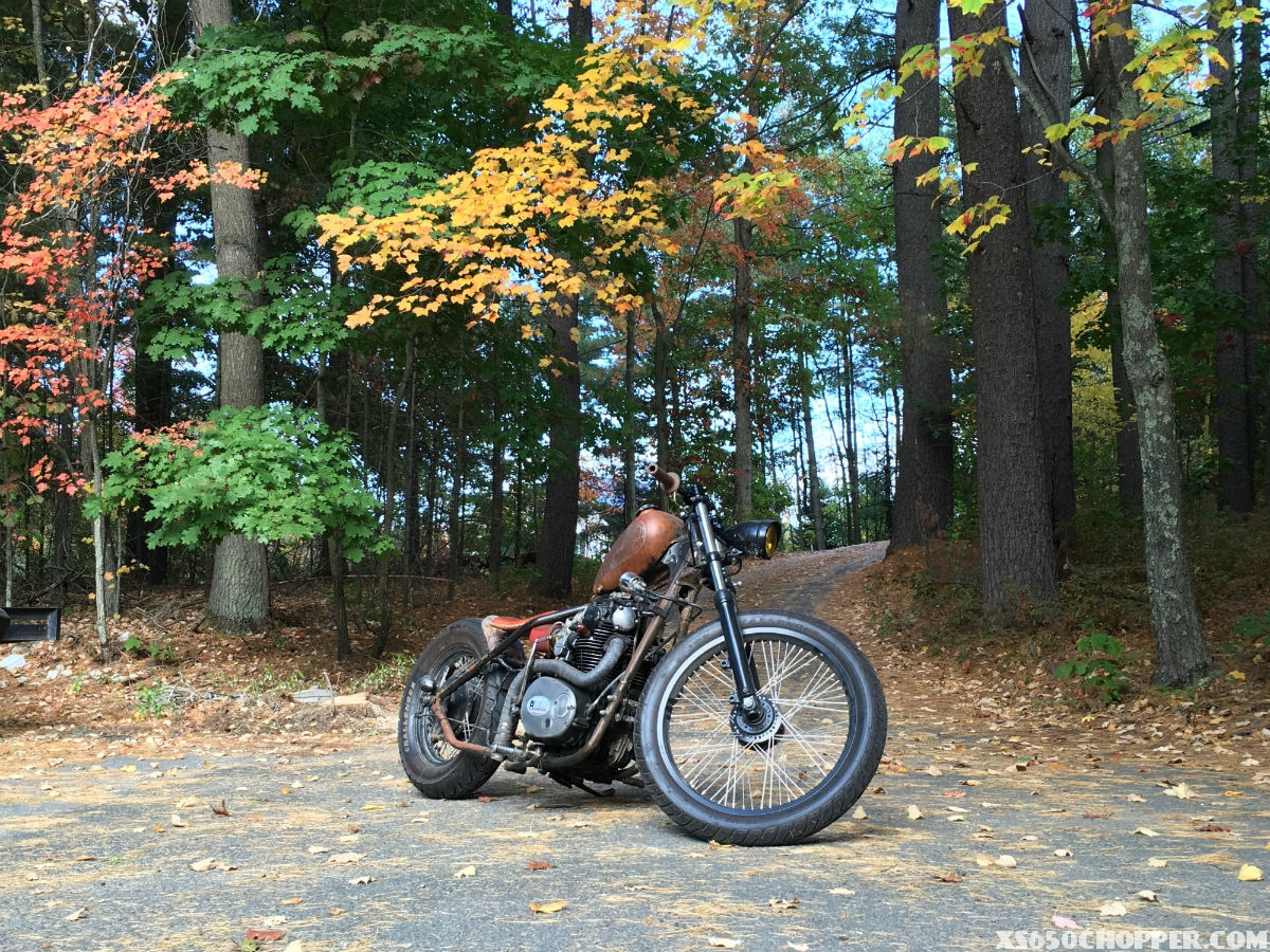 Joe's Gnarly Davidson